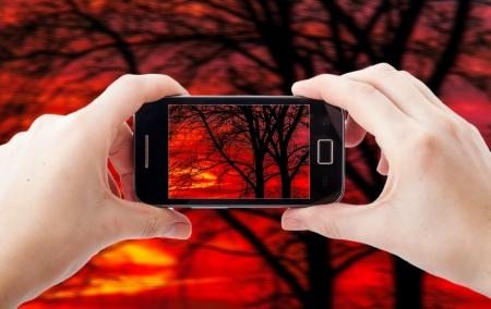 Ein Bild der Handy-Fotografie