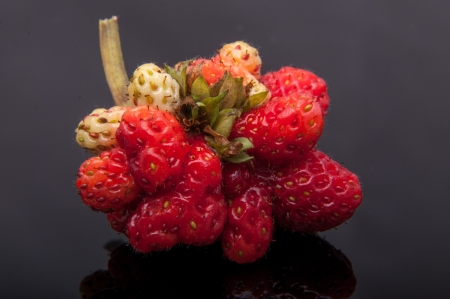 An image of genetic modified strawberry photo