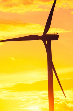 An image of wind turbines at sunset photo