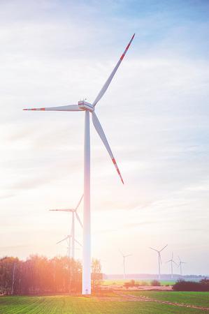 Wind turbine farm with rays of light at sunset Standard-Bild