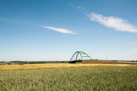 keystone: Bridge over wheat field in spring time.