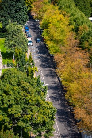 Asphalt road with tree in city with cars driving ahead