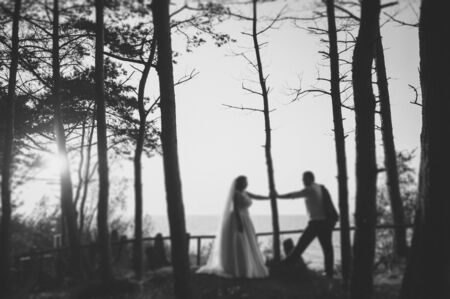 Bride and groom at a photo session in the nature. Stock Photo - 140682401