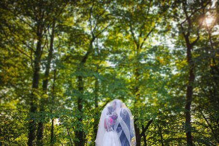 Bride and groom at a photo session in the nature. Stock Photo