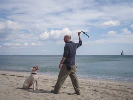 Bearded young man and his dog playing fetch at the beach 版權商用圖片 - 104965424