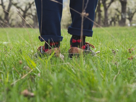 Close-up of mans legs in stylish sneakers on green grass 版權商用圖片 - 121184522
