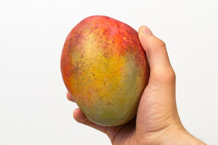 Right hand holding a red and green mango