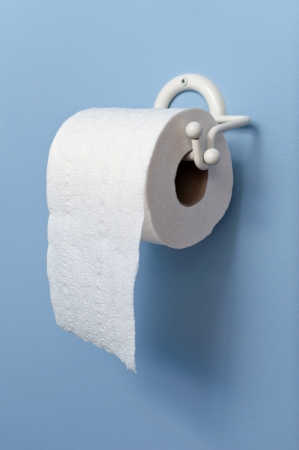 Toilet paper roll on a wall holder Stock Photo