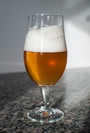 Blonde beer with a foamy head in a beer glass