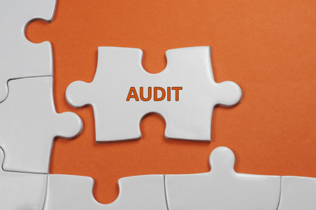seeks: Audit word on white puzzle - Business Concept