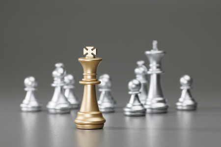 pawns: Golden King with silver king, rook, pawn on the background