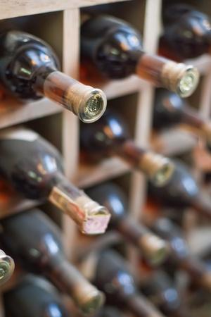Dusty wine rack.  Stock Photo