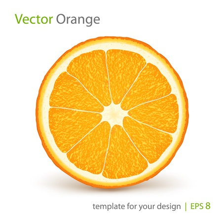 orange peel: Vector fresh ripe orange Illustration
