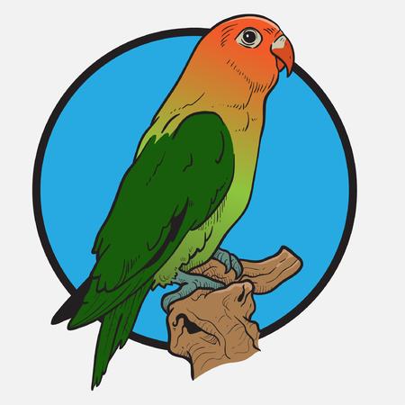 lovebird: Lovebird Illustration