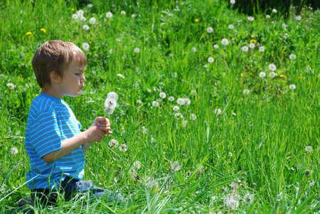 blowing dandelion: Ragazzo che soffia dandelion semi  Archivio Fotografico
