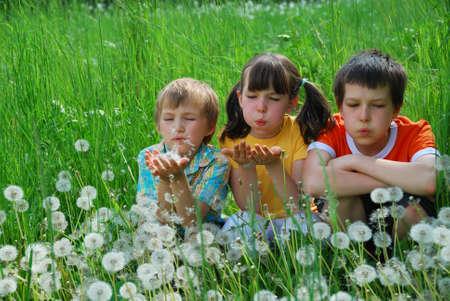 Children in dandelion field