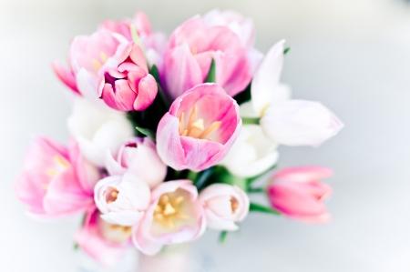 Wedding bouquet, tulips photo