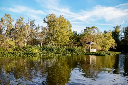 Famous Louisiana bayou swamp tour, New Orleans photo