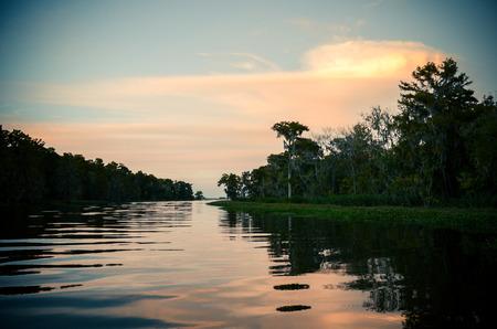 jezior: zachód słońca nad Bayou tle