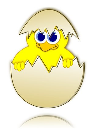 Happy easter chick in eggshell - reflection  photo