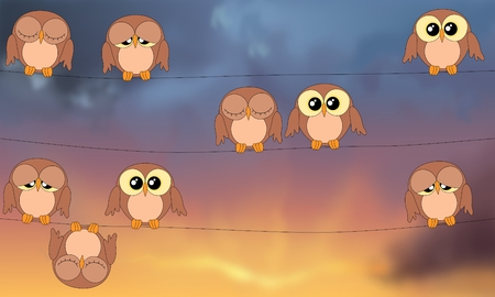 stormy sky: Cute owls sitting on power lines against stormy sky