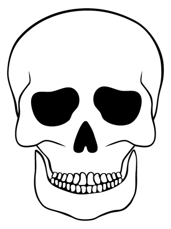 cranial skeleton: Abstract skull isolated on white background