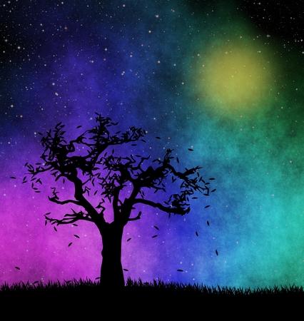 silhouette d'arbre la nuit étoilée Banque d'images