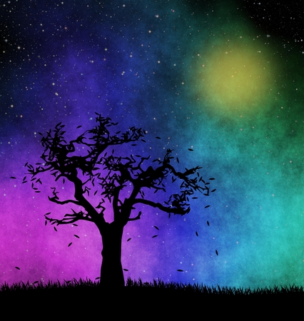 starry night: Tree silhouette at starry night Stock Photo