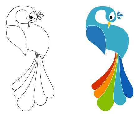 Peacock coloring page. Isolated on white background