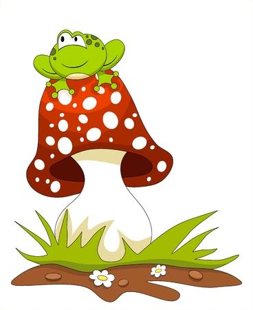 croaking: Frog sitting on a mushroom. Isolated on white
