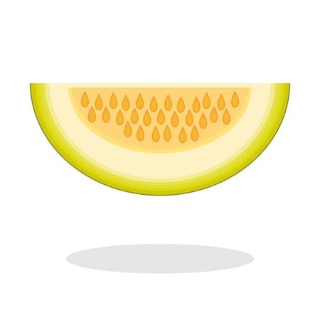 Slice of galia melon isolated on white background. Muskmelon - Galia. Honeydew melon