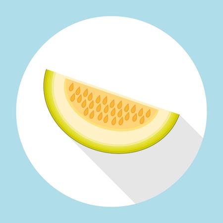 Slice of galia melon with long shadow. Muskmelon - Galia. Honeydew melon