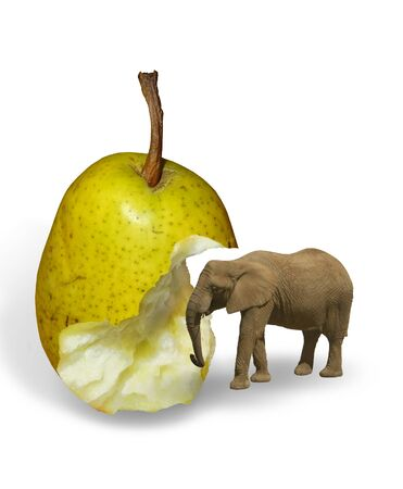 Bitten off green pear and elephant isloated on white background. Photomanipulation