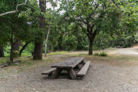wooden table with benches in the middle of a park in california 免版税图像