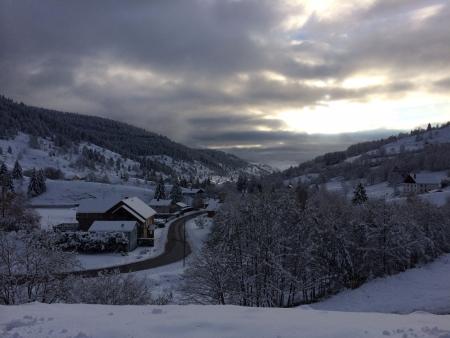 Vosges ski