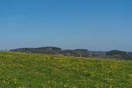 Landscape of the nature sanctuary of the german city called Hallenberg