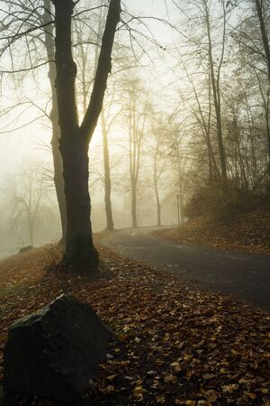 Street near the the german lake called Edersee at autumn