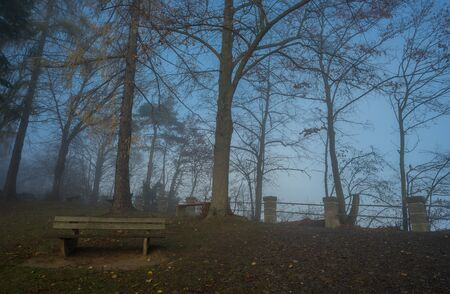 Park bench with fog near the german lake called Edersee at autumn
