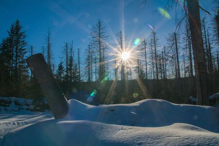 Winter landscape near at the german mountain called Brocken with lens flare