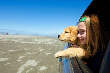 Kind en haar puppy hond met hoofd uit autoraam op het strand