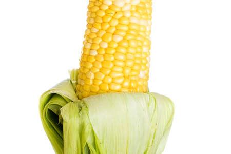 Farm fresh corn on the cob Фото со стока