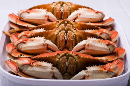 Verse Dungeness Crab