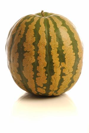 fond: Melon despagne sur fond blanc