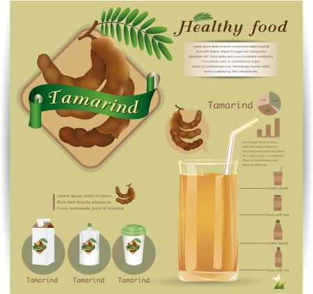 tamarind infographic vector illustration Vector