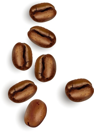 Coffee beans over a white background