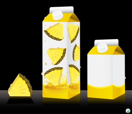 Blank milk or juice pack illustration Stock Vector - 21886761