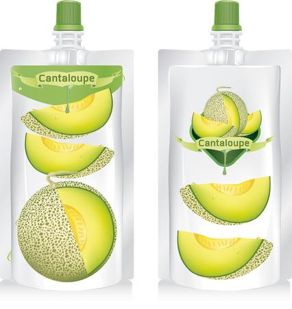 cantaloupe melon vector illustration