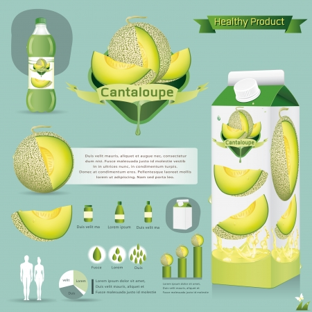 Vector illustration  Cantaloupe package infographics Vector