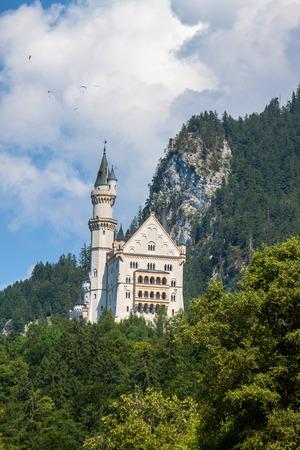 neuschwanstein: Neuschwanstein castle in Bavaria, Germany  With paraglides