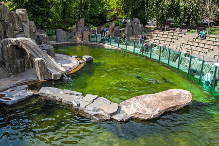zoo as: PRAGUE, MAY 12: People visit an exhibit of seals in Prague zoo on May 12, 2014 in Prague, Czech Republic.  In 2007 Forbes Traveler Magazine listed Prague ZOO as the 7th best Zoo in the world.